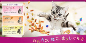 f:id:meisoutoyama:20160918212406j:plain