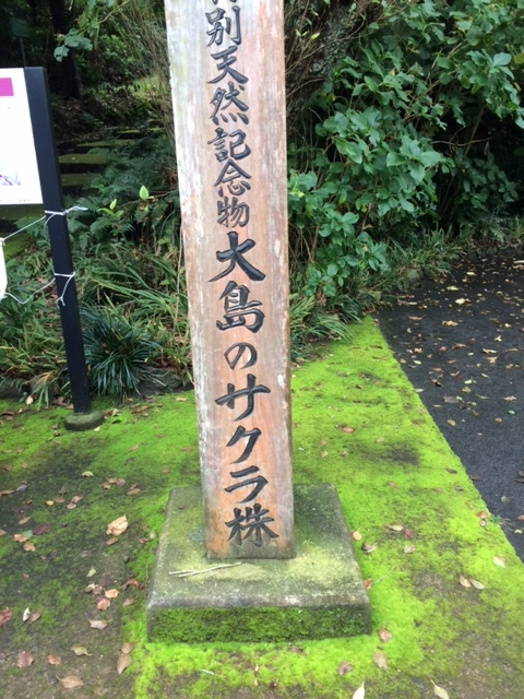f:id:meisoutoyama:20161115192432j:plain