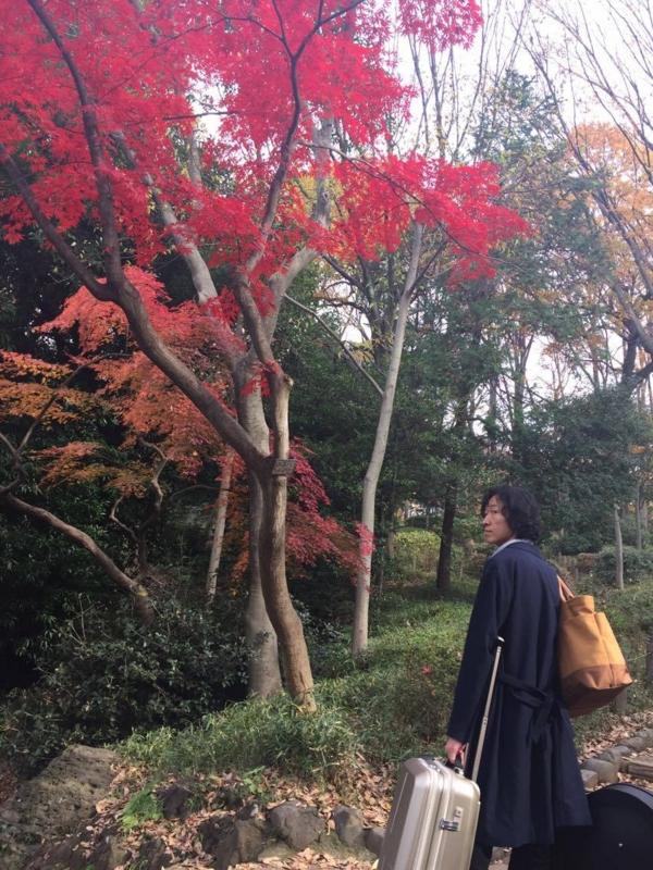 f:id:meisoutoyama:20161205153432j:plain