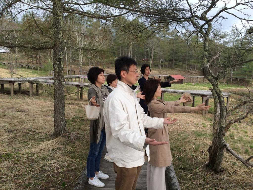 f:id:meisoutoyama:20170516065407j:plain