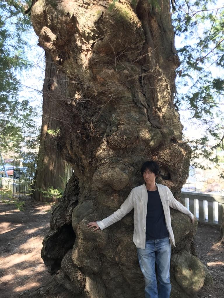 f:id:meisoutoyama:20180326082113j:plain