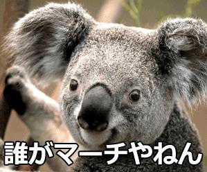 f:id:meisoutoyama:20180720075954p:plain
