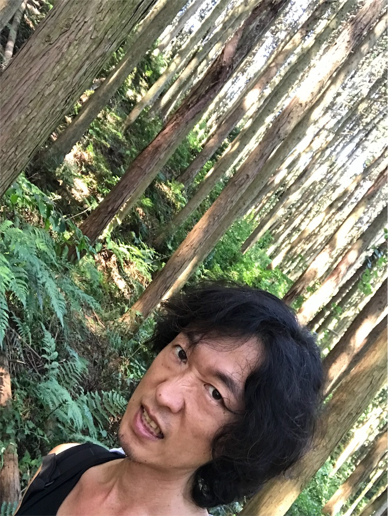 f:id:meisoutoyama:20180804143419j:image