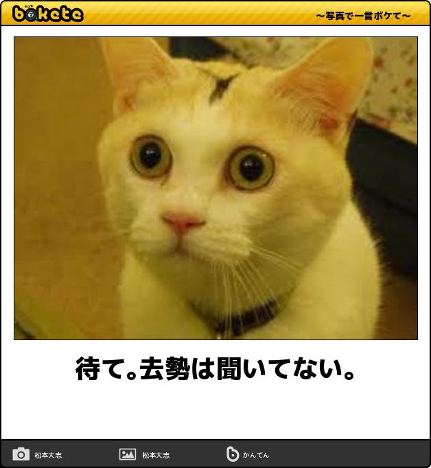 f:id:meisoutoyama:20180808115025p:plain