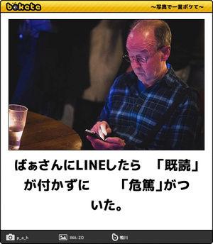 f:id:meisoutoyama:20180813082318j:plain