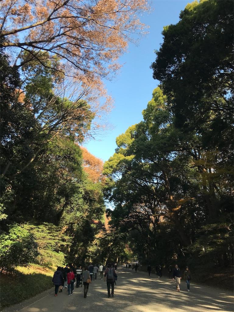 f:id:meisoutoyama:20181201122049j:plain