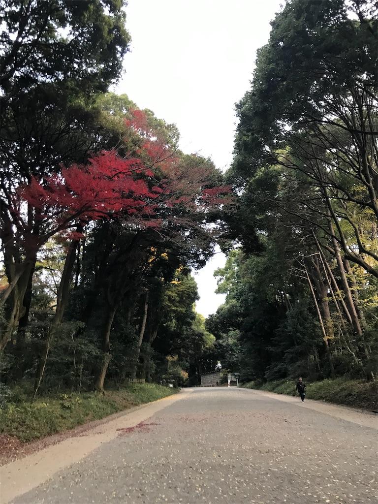 f:id:meisoutoyama:20181202094530j:plain