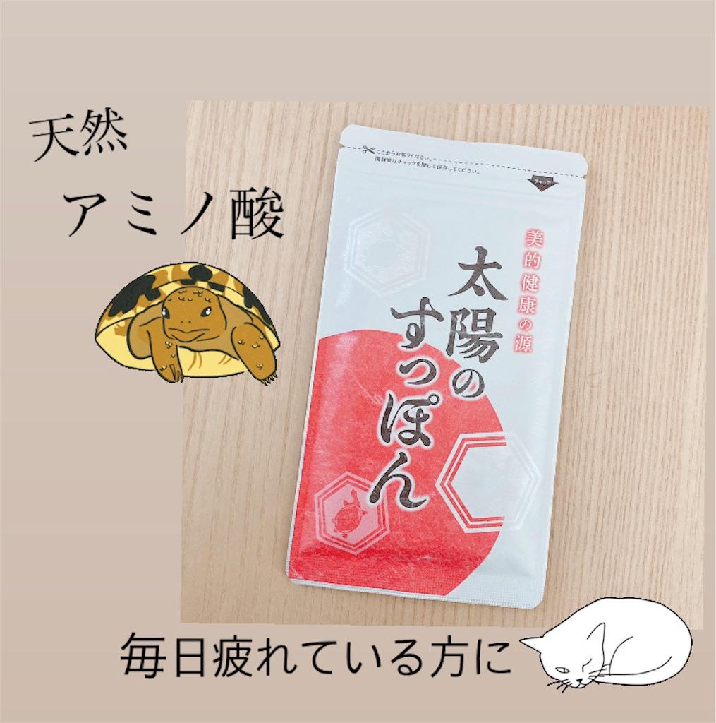 f:id:meitaro2020:20210217104755j:image