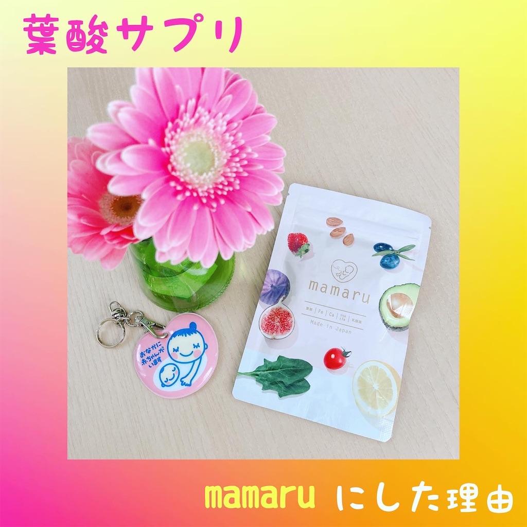 f:id:meitaro2020:20210303105633j:image