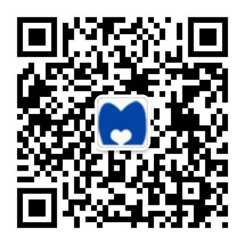 f:id:meizhishanghai:20170110180145j:plain