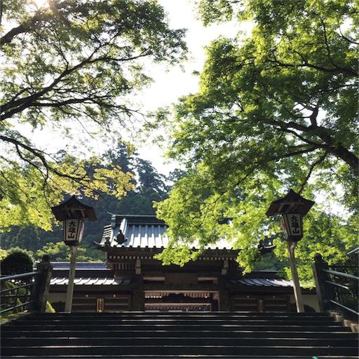 f:id:mekotasu:20160806205721j:image