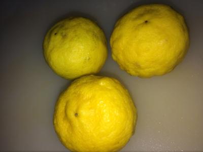 カット前の柚子の画像