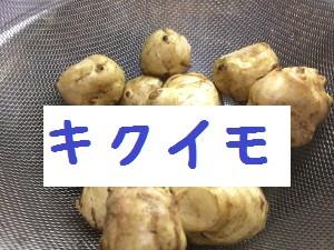 菊芋タイトル画像