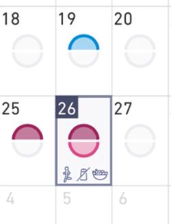 カレンダー表示での例