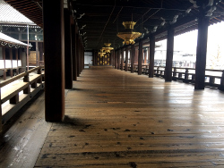 広い渡り廊下