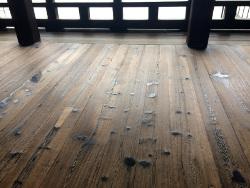 渡り廊下の床
