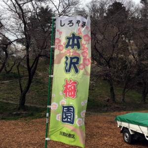 本沢梅園のぼりの画像