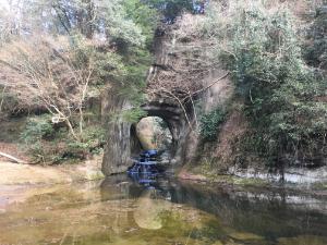 亀岩の洞窟のひき画像