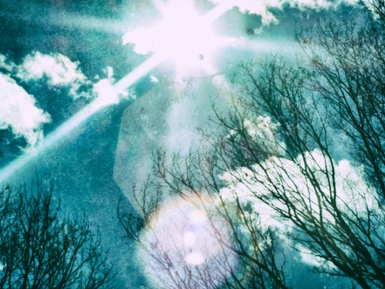 木漏れ日 画像 写真 青空