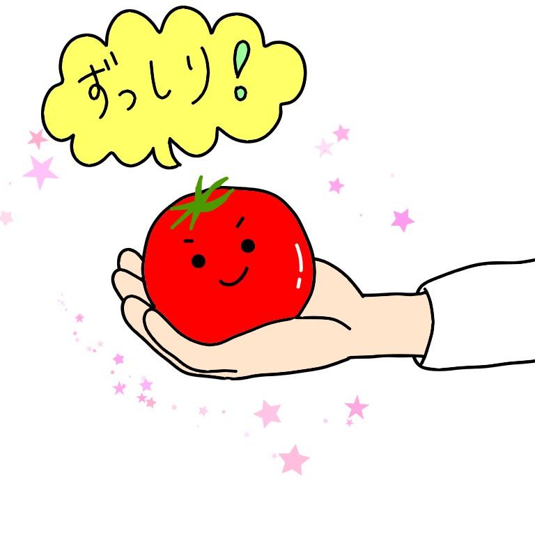 トマトの重さ