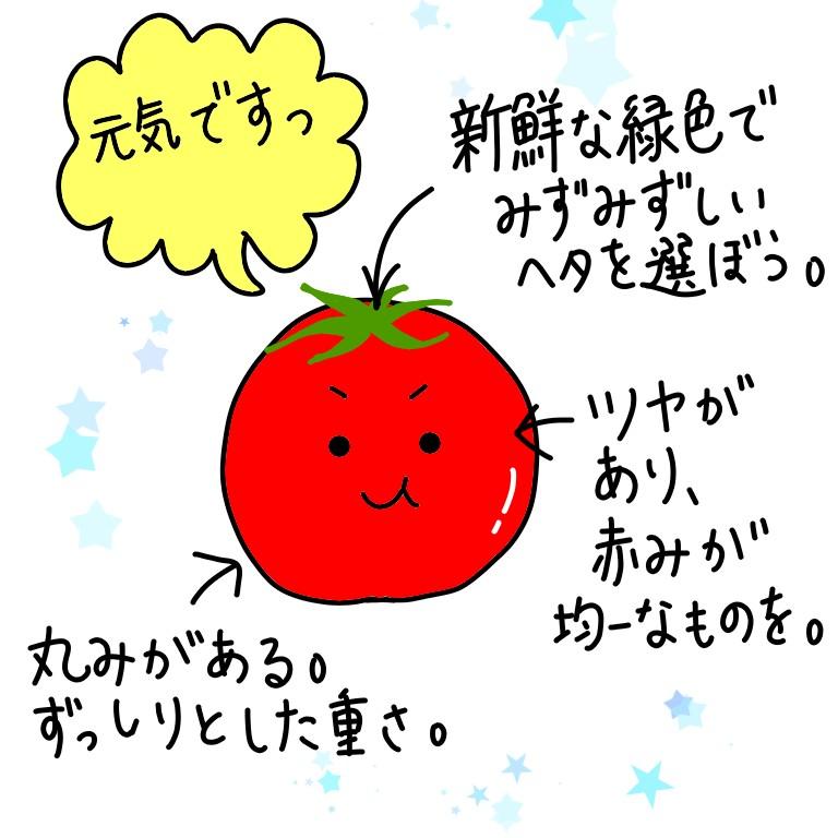 トマトの見分け方