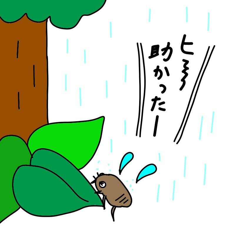 木の根元へ避難したセミの幼虫