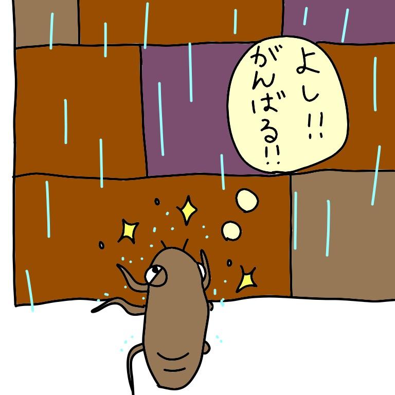 ふ化しようとするセミの幼虫