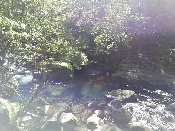 熊本 菊池渓谷 渓流 画像 写真