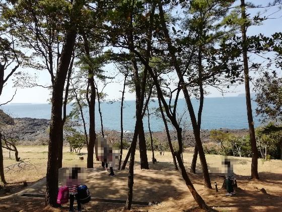 波戸岬キャンプ場 キャンプ 一般サイト 佐賀県 唐津市