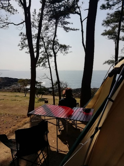 波戸岬キャンプ場 朝 一般サイト 海 景色 写真 画像 キャンプ