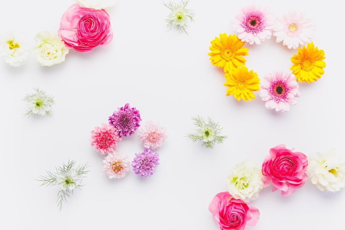 花びら かわいい きれい ピンク イエロー 散りばめる 画像 写真