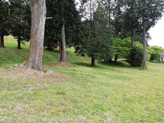 お牧山キャンプ場 公園 画像 写真 フリーサイト 福岡県みやま市 広い 芝生