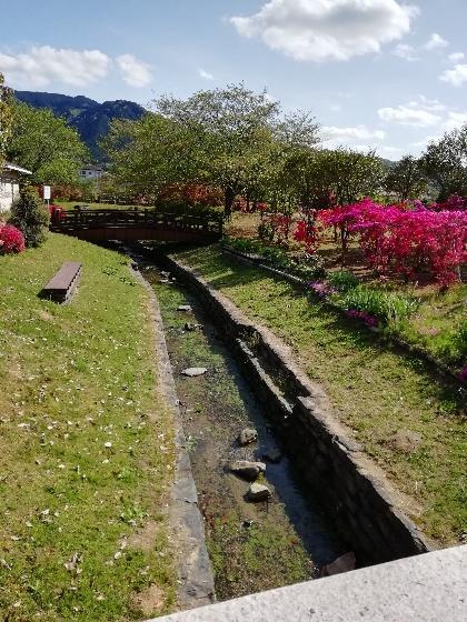 久留米ふれあい農業公園キャンプ場 水路 川 きれい 水 蛍 写真 画像 福岡県久留米市