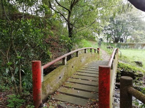 森林 赤い橋 マイナスイオン 画像 写真 癒し