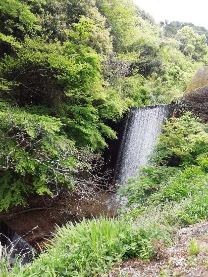 滝 美しい 画像 森林 写真 マイナスイオン 避暑地 涼み