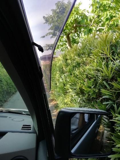 サイドミラー 車 狭い 道 車道 当たる 写真 草木 画像 運転