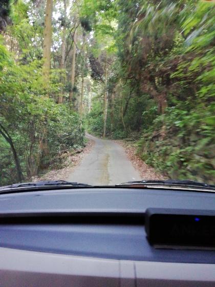 山道 狭い 道 運転 車 怖い 写真 画像