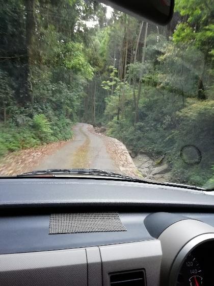 隣 崖 川 山 森林 車道 狭い 怖い 画像 写真 運転