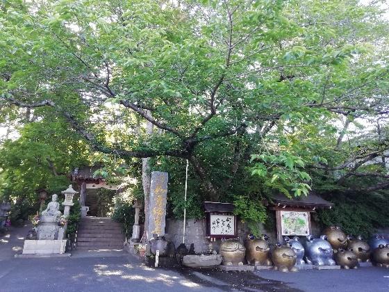 福岡県小郡市 かえる寺 入口 如意輪寺 写真 画像