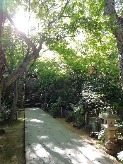 福岡県小郡市 かえる寺 如意輪寺 写真 画像 かえる 通路