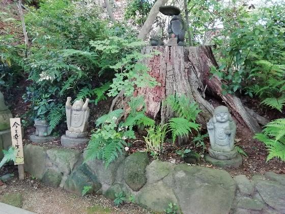 福岡県小郡市 かえる寺 如意輪寺 写真 画像 かえる 通路 お地蔵さん