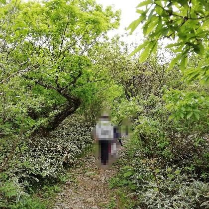 佐賀県 小城市 天山 登山 家族 写真 画像