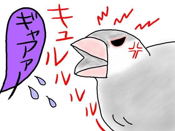 イラスト 文鳥 画像 怒る キレる 面白い 漫画