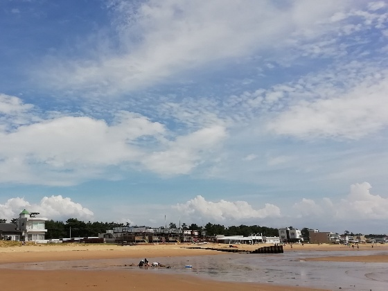 晴天 海 夏 写真 画像 暑い 青 砂浜