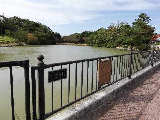 鏡山展望台 佐賀県 唐津市 写真 画像 さよひめ橋 唐津湾 蛇池