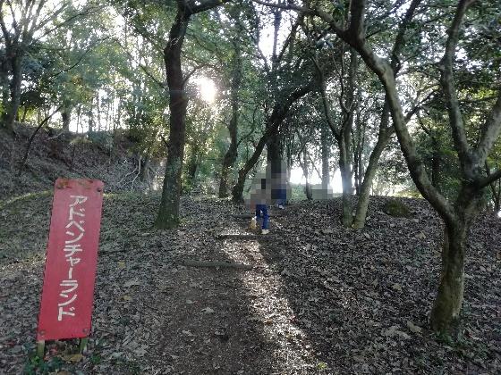 浮羽神社 浮羽稲荷神社 福岡県 鳥居 階段 写真 画像 インスタ映えスポット 森林 アドベンチャーランド