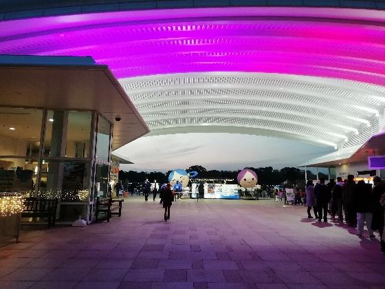 吉野ヶ里歴史公園 写真 画像 入口 入場ゲート 入園 2020 光の響 イルミネーション イベント