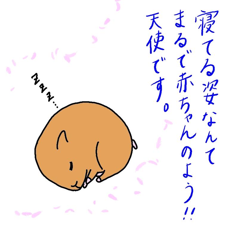 ハムスター 寝る イラスト 画像 かわいい 手描き 漫画