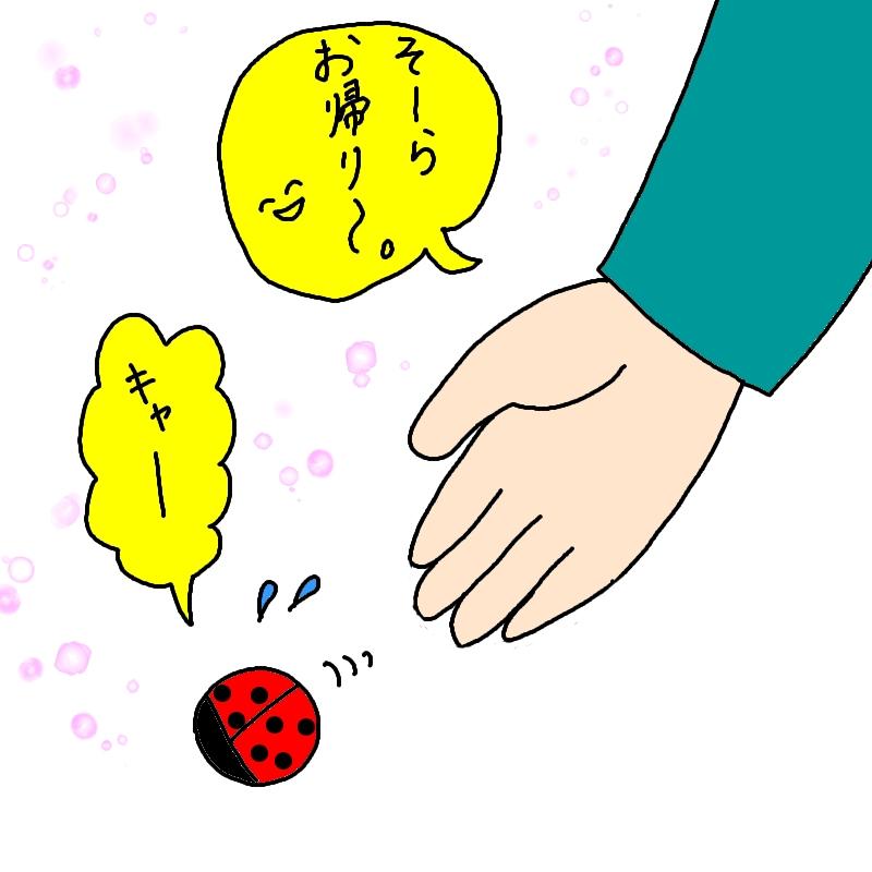 ナナホシテントウムシ 逃がす イラスト 画像 かわいい 漫画
