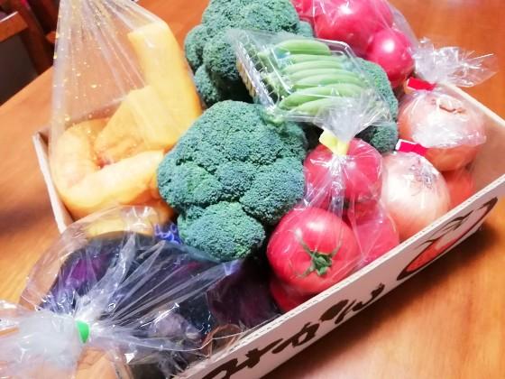 段ボール 野菜 トマト なすび 写真 画像 ブロッコリー たくあん たまねぎ